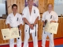 Presentation of Shodan belts
