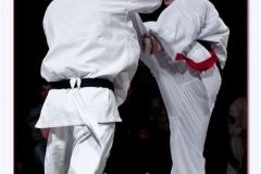 Shinkyokushin