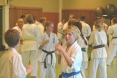 Sokyokushin summer camp 2013 day 2