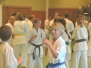 Sokyokushin summer camp 2013 day 2