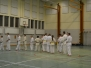 Sweden Kyokushin Winter Camp  day 1  2013