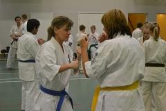 Sweden Kyokushin Winter Camp Day 2