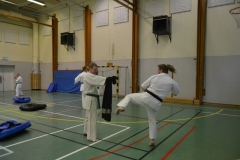 Sweden Kyokushin Winter Camp Day 3