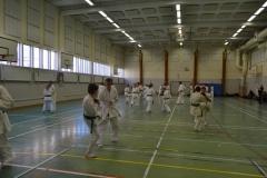 Sweden Kyokushin Winter Camp  day 3,2  2013